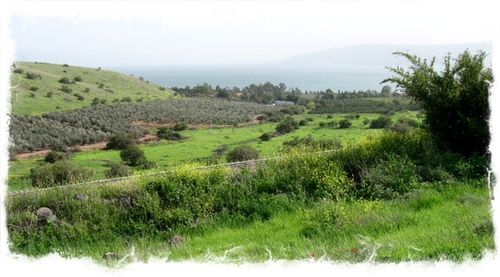 Sea of Galilee white ©-Stiles.jpg