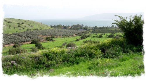 Sea of Galilee white ©-Stiles.jpg